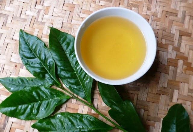 Lá trà xanh có công dụng đặc biệt trong chữa trị eczema